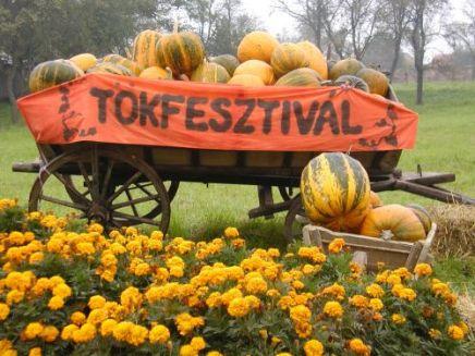 festiwal dyni w Balatonalmadi, fot.napibalaton