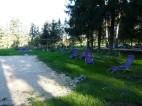 ogród ZEN